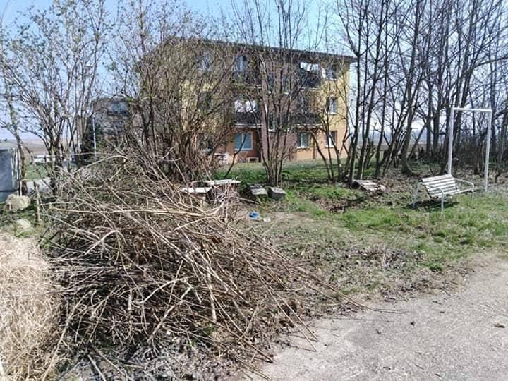 Deň Zeme - odstránenie náletových drevín